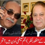 Who is actual Najam Sethi ? By Muhammad Irshad