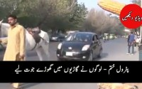 21st Century Pakistan: Horse pulls a car in Lahore