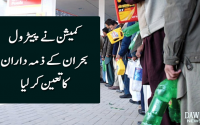 Commission finds responsible for Petrol crises the whole supply chain